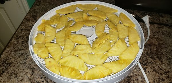 Dehydrated Pineapple Chips - Large